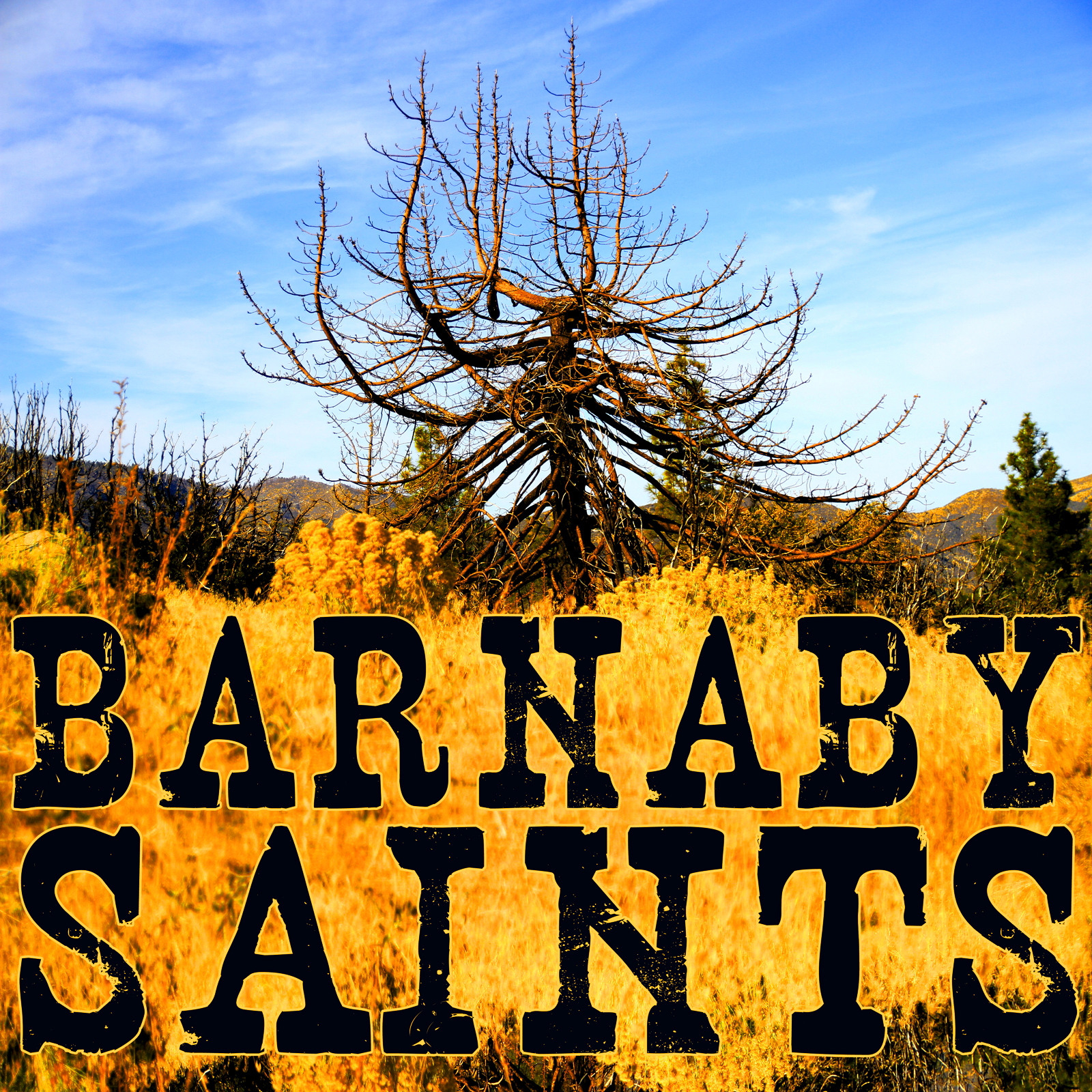 Barnaby Saints EP